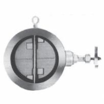 Check valve10FW10BW