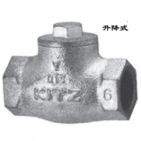 Check valve10SF
