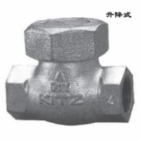 Check valve16SF