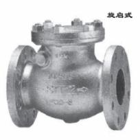 Check valve10SRBF