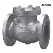 Check valve16SRB