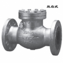 Check valve20SOB