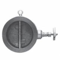 Check valve20SW