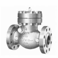 Check valve900SCOS