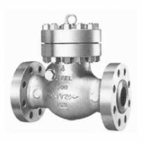 Check valve1500SCOS