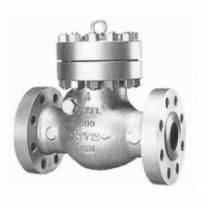 Check valve 600SCOS